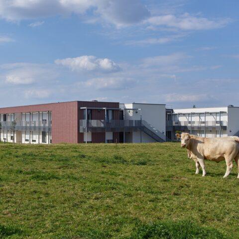 EHPAD Chavagnes-en-Paillers (85)